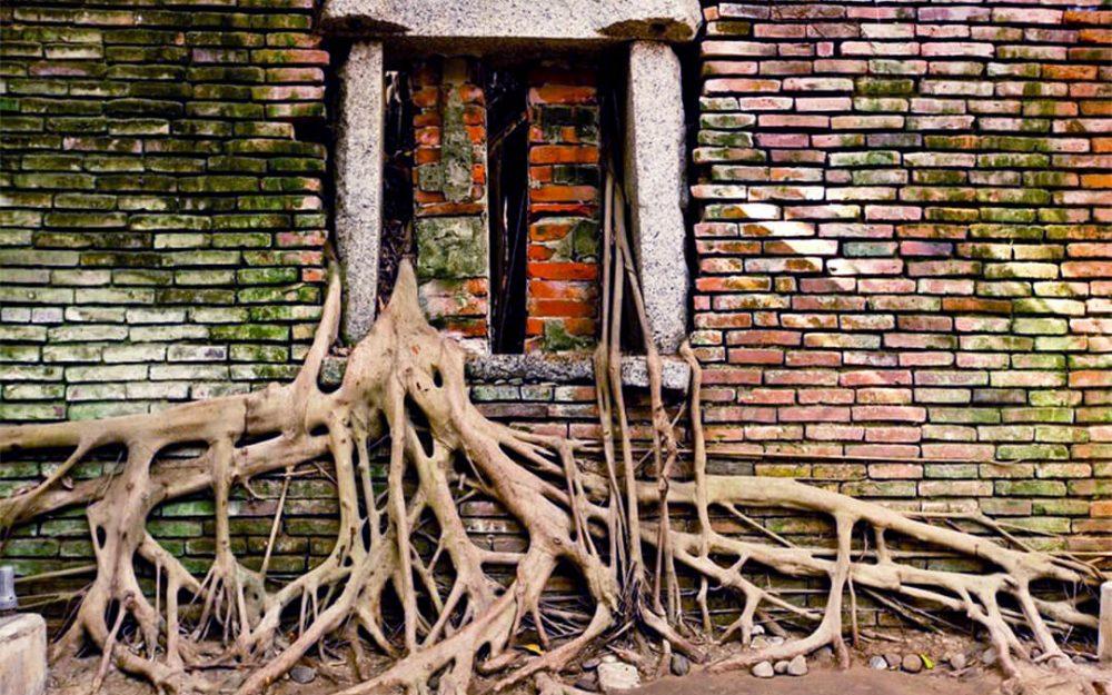 安平樹屋-南部建築、室內推薦