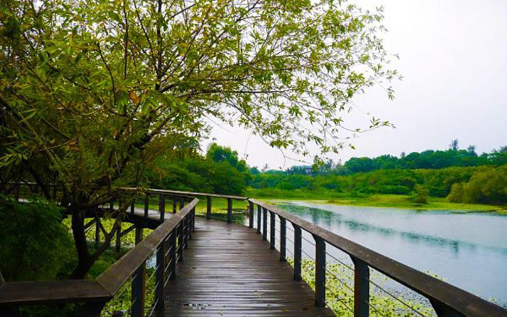 澄清湖-南部山湖花海推薦